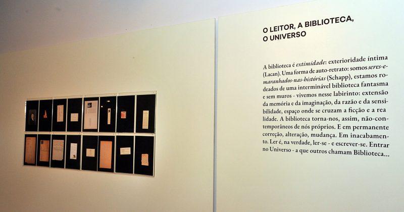 O leitor, a biblioteca, o universo - Foto: Jorge Maruta/USP Imagens