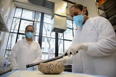 Letícia P. Rabelo e Gabriela Oda, alunas de iniciação científica da faculdade de medicina no laboratório de envelhecimento fazendo manipulação de encéfalos no banco de encéfalos. | Foto Cecília Bastos