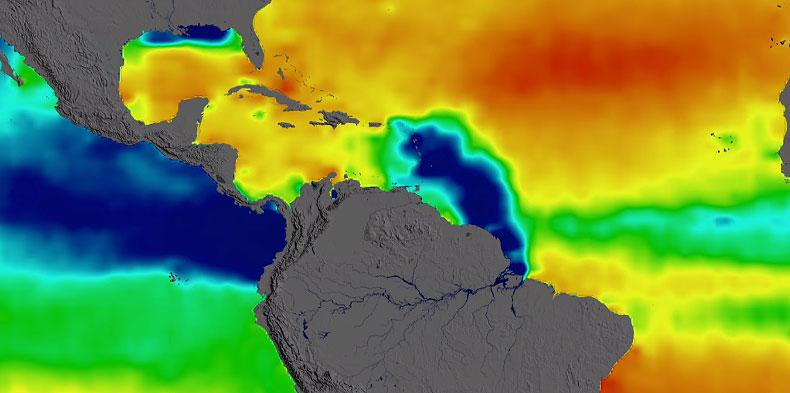 Foto: Reprodução vídeo / Núcleo de Divulgação Científica da USP